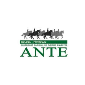 35-ANTE